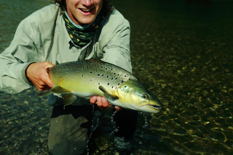 Fiske024